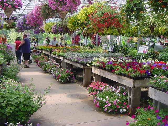 Whitneys Farm Market Amp Garden Center