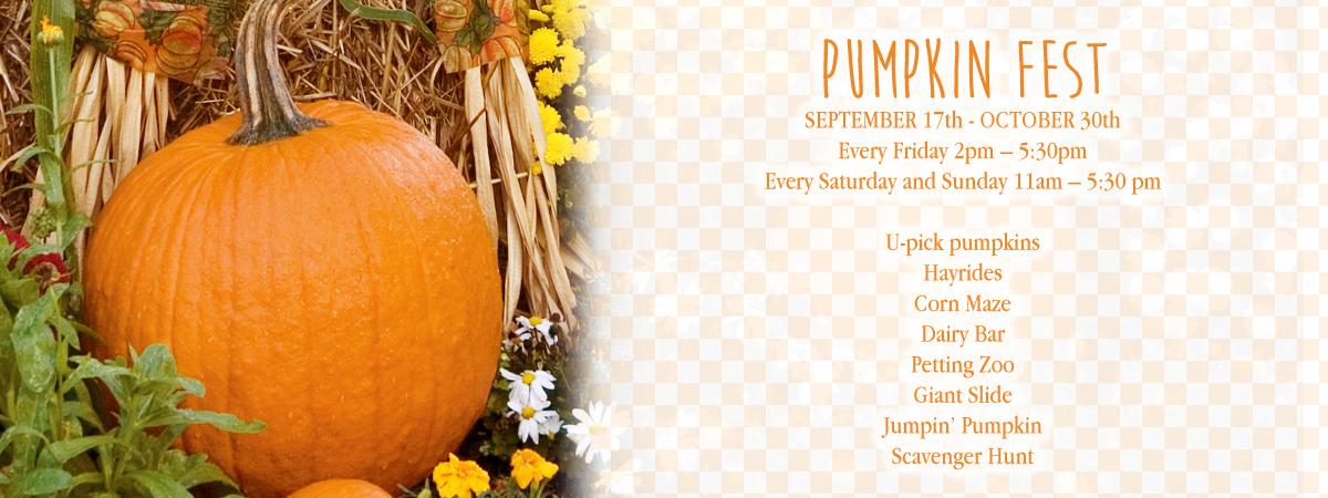 pumpkinfest2016